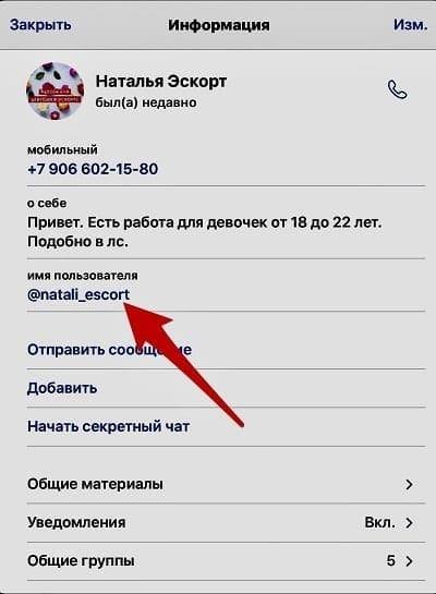 Где смотреть имя пользователя чтобы сообщить про спам в телеграмме